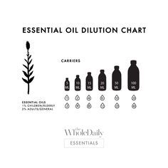 I've Bought My Oils, Now What? The 'Must-Have' Essential Oil Resources   Companion Products - The Whole Daily