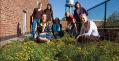 A student task force led the charge to construct the first green roof on campus.