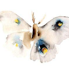 Moth by dear catherina