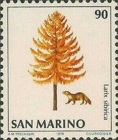 ◇San Marino  1979