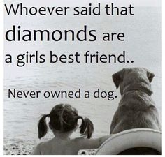 Quote for dog lovers