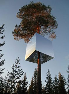 Invisible treehouse hotel