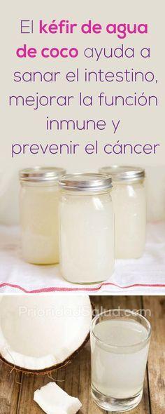 Como preparar el kefir de agua de coco para sanar el intestino, mejorar la función inmune y prevenir el cancer. #kefir #agua #cancer
