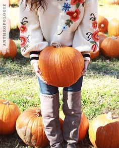 Cozy Sweaters for fall days | Shop Anthropologie