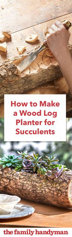 Container Gardening How to Make a Wood Log Planter for Succulents - Find a new use for that fallen tree by creating a natural wood log planter Diy Wood Planters, Log Planter, Flower Planters, Garden Planters, Succulents Garden, Flower Pots, Colorful Succulents, Garden Fun, Planter Ideas