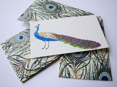 Peacock Mini Cards and Envelopes   Set of 10 by PikakePress, $10.00