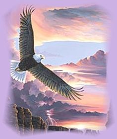 Isaiah 40:31   but those who hope in the LORD will renew their strength. They will soar on wings like eagles; they will run and not grow weary, they will walk and not be faint.