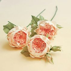 Paper flowers, juliete garden roses, diy paper flowers.