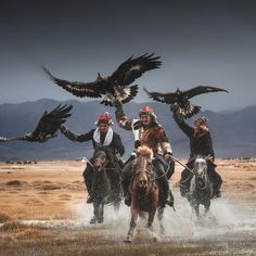 Horse riding and Trekking Expeditions while in Mongolia. From zavkhan trekking to stone horse trails mongolia. Best time travel to Mongolia for Horse riding Mongolia, Aigle Animal, Eagle Hunting, Golden Eagle, Tier Fotos, People Of The World, World Cultures, Animal Photography, Landscape Photography