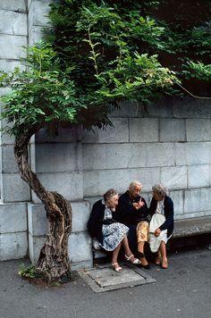 Friends | Steve McCurry