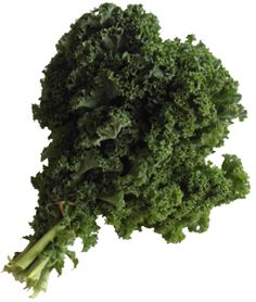 Chou Kale   Prince de Bretagne Le Chou Kale, Dame Nature, Parsley, Herbs, Prince, Food, Sprouts, Kitchens, Brittany