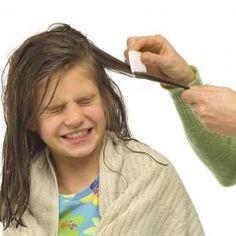 Revisá mechón por mechón el pelo de tu hijo