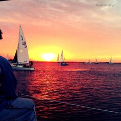 <3 I want to sail!