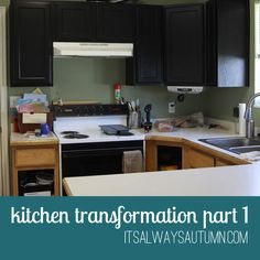Tweet Pin It Interested in the story of how our old, cheap, oak kitchen cabinets turned into really pretty black cabinets for $125? Read on! My husband and I both kind of hate home improvement projects. Or rather, he kind of hates them and I occasionally convince myself I like them, only to get halfway …