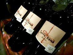 ORGANIC WINE / Francois LURTON  2010 Terra sana / France