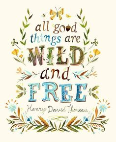 Dress up a bare wall with the All Good Things are Wild and Free Canvas Wall Art from Oopsy Daisy. Canvas wall art is perfect for adding color and style to bedrooms, playrooms, nurseries and even bathrooms! Thoreau Quotes, Watercolor Lettering, Watercolor Print, Deco Originale, Henry David Thoreau, Free Art Prints, Art Prints Quotes, Quote Art, Artwork Prints