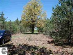 Thompsonville, Benzie County, Michigan Land For Sale - 10 Acres