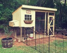 It was a big, big week for everyone in my little household. The coop was finished, the chicks moved outside, and we celebrated my birt...