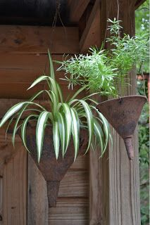 hanging planters from old metal funnels - upcycled gardening
