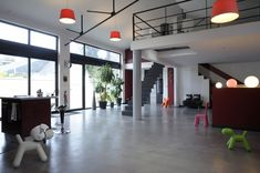 beton-cire-loft