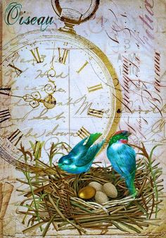 Vintage Birds Collage Background ~ Antique Prints Passion
