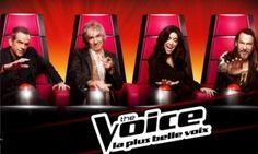 Quel jury de The Voice suis-je ?