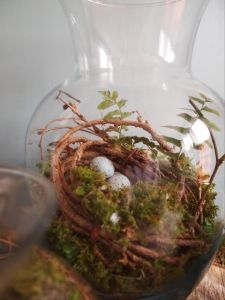 repurposed glass flower VASE....=  terrarium