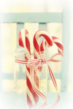 Candy Cane...........
