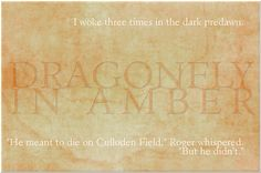 Dragonfly In Amber first & last sentence
