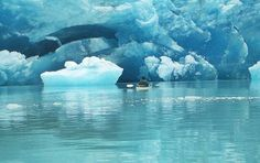 Once in a lifetime: 10 things to do before you die - kayaking on  Glacier Bay - Alaska