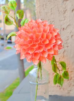 Wafer Paper Dahlia - SugarEd Productions Online Classes