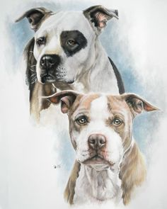 Sparkle And Buster Painting by Barbara Keith