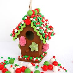 Gingerbread Bird House | SimplyCelebrate.Meals.com - Christmas crafting gets even cuter with this gift-worthy, candy-coated #Gingerbread Bird House. #christmas #craft #simplycelebrate
