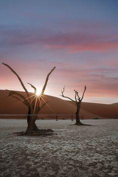 Dead vlei sunrise - Namibia 2016. by Seb - Photo 160263891 - 500px