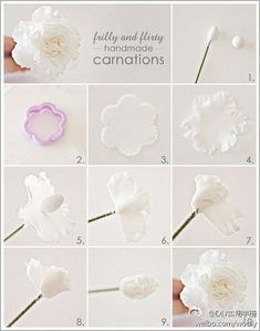 Wafer Paper Carnation Tut