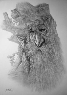 A fine drawing of Treebeard, one of my favourite characters from The Lord of the Rings by J.R.R. Tolkien.