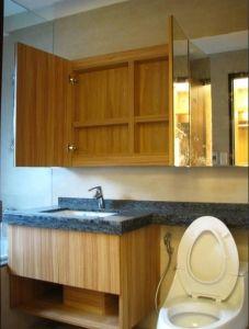 防水浴櫃有馬桶