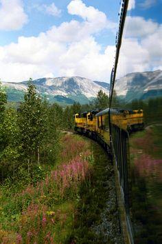 Alaska Railroad heading to Denali