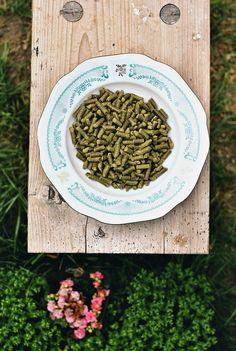 Pellets from hemp flowers are use by breweries to make hemp beer
