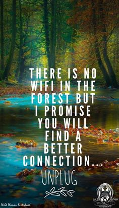There is no WiFi in the forest but I promise you will find a better connection. Unplug. WILD WOMAN SISTERHOOD™