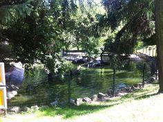 Zoo Kraków :)