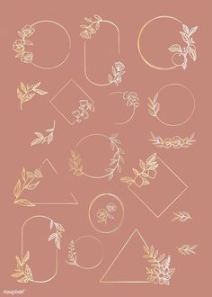 Botanical frame element vector collection | premium image by rawpixel.com