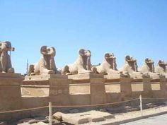 Tagesausflug von Hurghada nach Luxor mit dem Bus  Tagesausflug von Hurghada nach Luxor mit dem Bus,Besichtigen Sie die Sehenswürdigkeiten in Luxor:Tal der Könige,Memnonkolosse,Hatschepsut Tempel und Karnak Tempel,Theben-West. www.book-tour-egypt.com