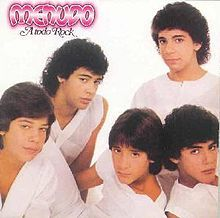 Menudo was a Puerto Rican boy band that was formed in the 1970s.  However, this was the group that I listened to in the 1980's!