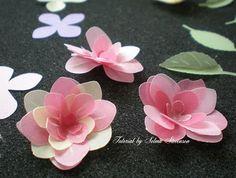 vellum flowers