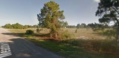 3529 Meadow Rd - actual lot on the right
