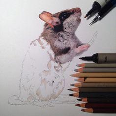 Karla est une artiste qui réalise des dessins plus vrais que nature, fourmillants d'une multitude de détails. Pour aboutir à un tel résultat, elle utilise de simples crayons de couleur, quelques marqueurs, des pinceaux et un peu de peinture acrylique ! Un travail spect...