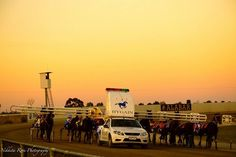 Great Nikkita Ross photo of the mobile at Shepparton trots.