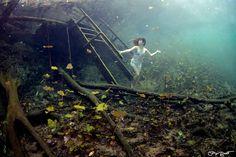 Underwater fairytale. Carwash Cenote near Tulum, Mexico featuring Prawno Apparel.