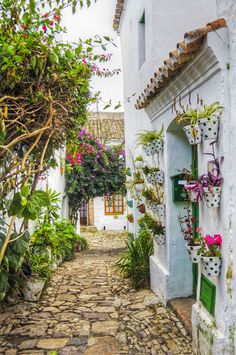 Beautiful streets in Castellar de la Frontera, Andalusia, Spain